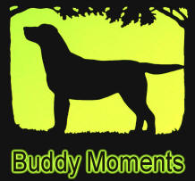 Buddy Moments Slide Show 2008-2009, Eric Kinkel's dog Buddy Kinkel