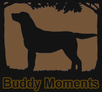 Buddy Moments slide show_08