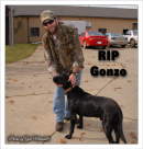 Eric Kinkel & Ted Nugents dog RIP Gonzo