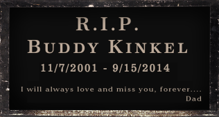 Buddy Kinkel - 11/7/2014 - 9/15/2014 Eric Kinkels  old boy pup and forever pal!